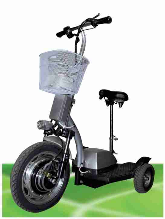 350w silber zappy golfcart fun elektroscooter bestes angebot von roller. Black Bedroom Furniture Sets. Home Design Ideas