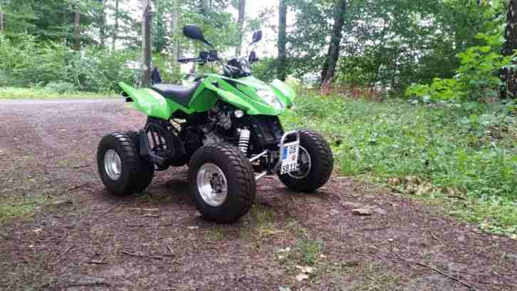 Arctic Cat DSV 300