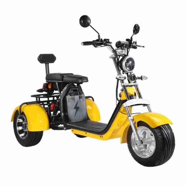 E Trike, Tricycle, Scooter, Harley Roller, wie auch immer .