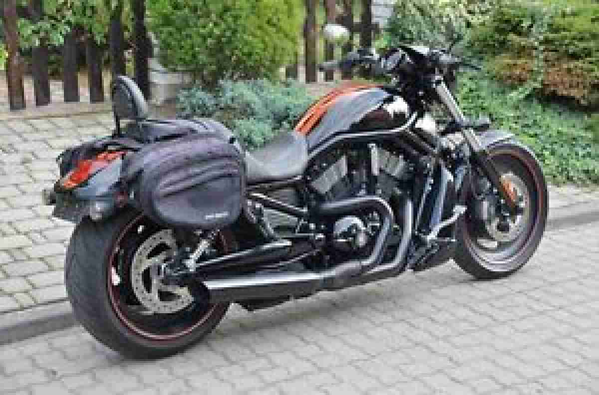 harley davidson v rod vrscdx night rod special topseller. Black Bedroom Furniture Sets. Home Design Ideas