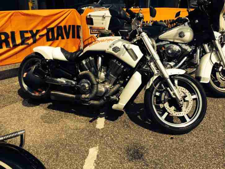 Harley Davidson v Rod Night Rod V Rod Muscle