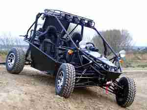 NeSS Goka Buggy 1.3L mit Nissan Motor Made in