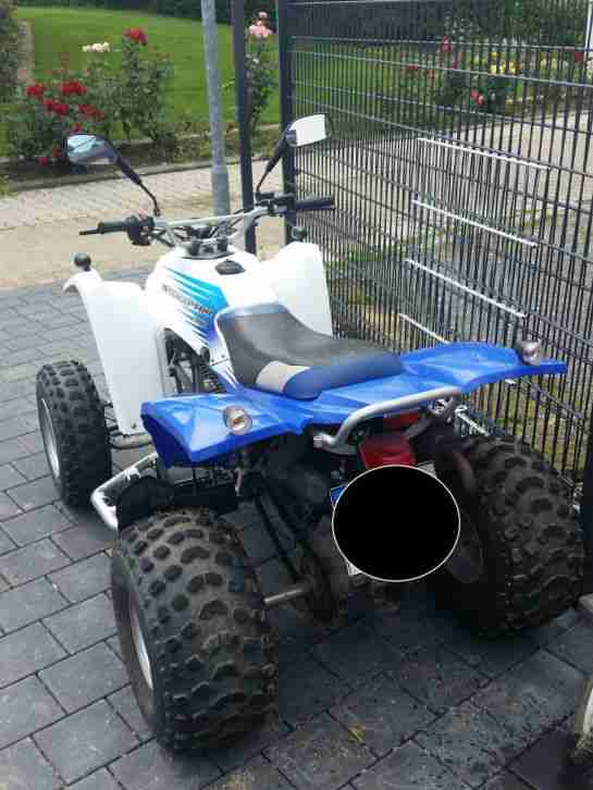 Quad Adly (Herkules) 300