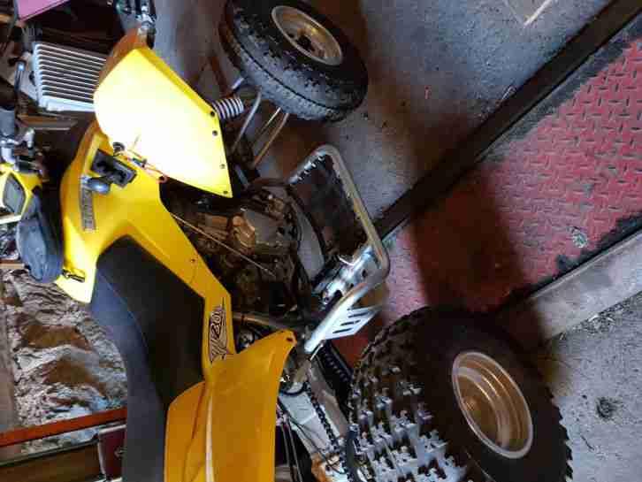 Quad Burelli 250 Baugleich Triton Baja, Acces Neuwertig