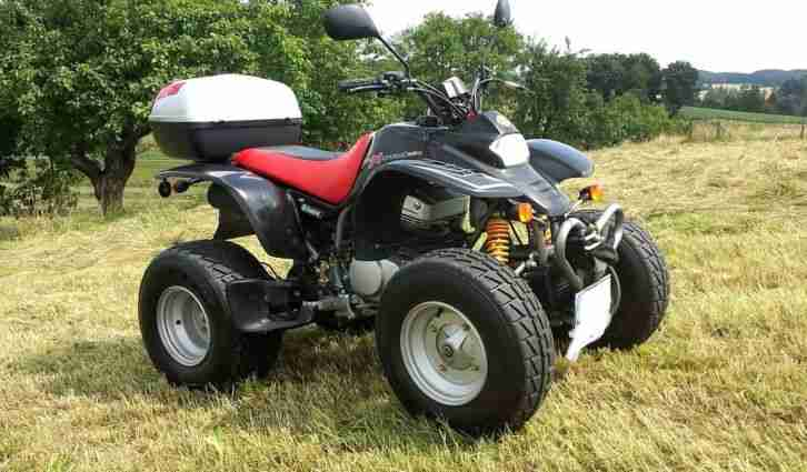 SMC 250 Rex Quad ATV